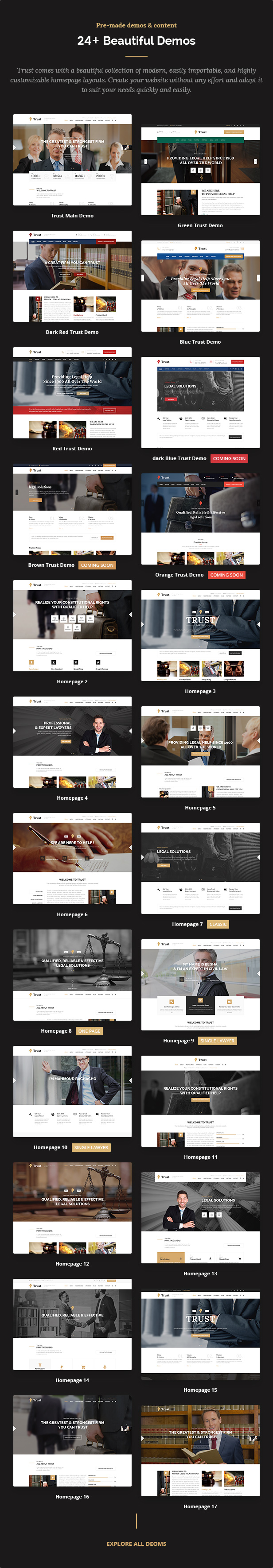 Trust Business - Lawyer and Attorney WordPress Theme - 5