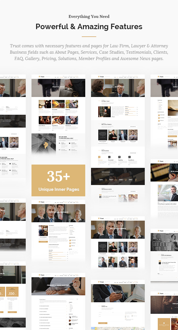 Trust Business - Lawyer and Attorney WordPress Theme - 10